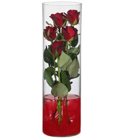 cam içerisinde 7 adet kirmizi gül  Tunceli çiçekçi telefonları