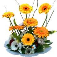 camda gerbera ve mis kokulu kir çiçekleri  Tunceli güvenli kaliteli hızlı çiçek