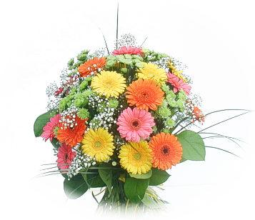 13 adet gerbera çiçegi buketi  Tunceli ucuz çiçek gönder