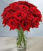 Tunceli çiçek yolla  Sevdiklerinize özel ürün 12 adet cam içerisinde kirmizi gül  Tunceli İnternetten çiçek siparişi