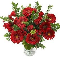 5 adet kirmizi gül 5 adet gerbera aranjmani  Tunceli İnternetten çiçek siparişi