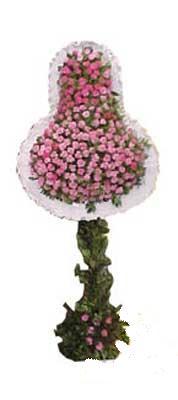 Tunceli çiçek yolla , çiçek gönder , çiçekçi   dügün açilis çiçekleri  Tunceli çiçek satışı