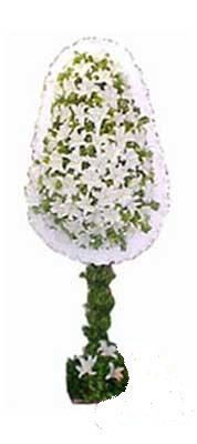 Tunceli çiçek yolla  nikah , dügün , açilis çiçek modeli  Tunceli ucuz çiçek gönder