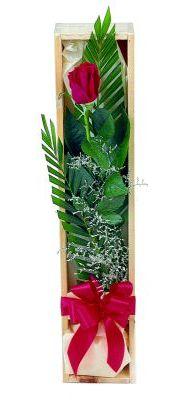 1 adet kutuda kirmizi gül  Tunceli çiçek servisi , çiçekçi adresleri