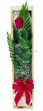 Sade ve gösterisli kutu içerisinde tek gül  Tunceli çiçek gönderme sitemiz güvenlidir