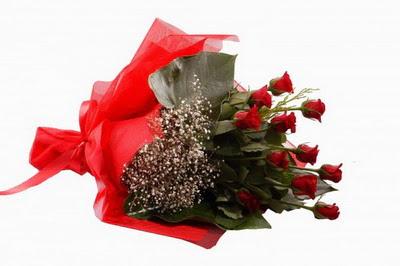 Tunceli çiçek yolla  11 adet kirmizi gül buketi çiçekçi