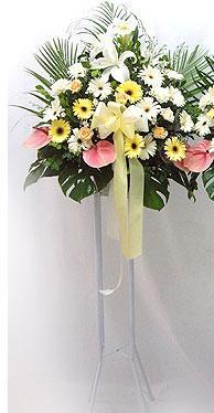 Tunceli ucuz çiçek gönder   perförje çiçegi dügün çiçekleri
