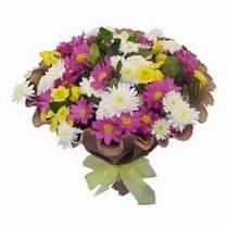 Tunceli güvenli kaliteli hızlı çiçek  Mevsim kir çiçegi demeti