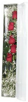 Tunceli çiçek yolla   5 adet gülden kutu güller