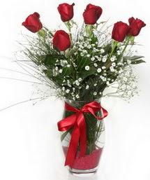 7 adet gülden cam içerisinde güller  Tunceli internetten çiçek satışı