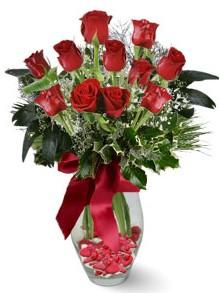 9 adet gül  Tunceli çiçek gönderme  kirmizi gül