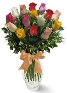 15 adet vazoda renkli gül  Tunceli çiçek gönderme