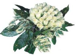 Tunceli çiçek satışı  9 Beyaz gül Özel kisiler için