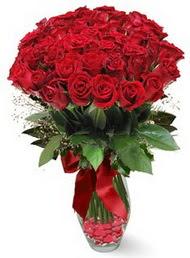 19 adet essiz kalitede kirmizi gül  Tunceli internetten çiçek satışı