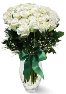 19 adet essiz kalitede beyaz gül  Tunceli çiçekçi telefonları