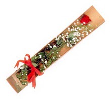 1 adet kirmizi gül  Tunceli güvenli kaliteli hızlı çiçek