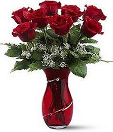 Vazo içinde 8 adet kirmizilar içinde güller  Tunceli çiçek satışı