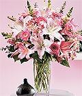 Tunceli hediye sevgilime hediye çiçek  Kazablanka biçme vazoda