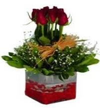 Tunceli kaliteli taze ve ucuz çiçekler  7 adet mika yada cam vazoda gül tanzimi