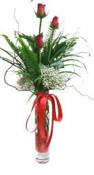 Tunceli çiçek yolla  3 adet kirmizi gül vazo içerisinde