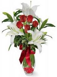 Tunceli çiçek , çiçekçi , çiçekçilik  5 adet kirmizi gül ve 3 kandil kazablanka
