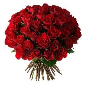 Tunceli online çiçekçi , çiçek siparişi  33 adet kırmızı gül buketi