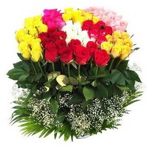 Tunceli cicek , cicekci  51 adet renkli güllerden aranjman tanzimi