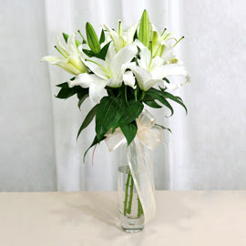 Tunceli çiçekçiler  2 dal kazablanka ile yapılmış vazo çiçeği