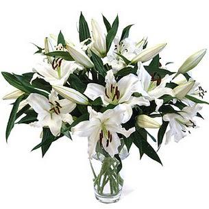 Tunceli güvenli kaliteli hızlı çiçek  3 dal görsel casablanca vazo tanzimi