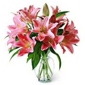 3 dal kazablanka görsel vazosu  Tunceli çiçek satışı
