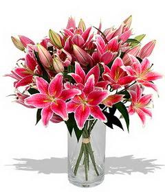 4 dal cazablanca görsel vazosu  Tunceli çiçek gönderme sitemiz güvenlidir