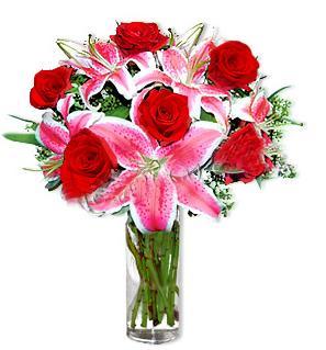 Tunceli çiçek mağazası , çiçekçi adresleri  1 dal cazablanca ve 6 kırmızı gül çiçeği