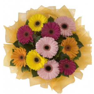 Tunceli çiçek online çiçek siparişi  11 adet karışık gerbera çiçeği buketi