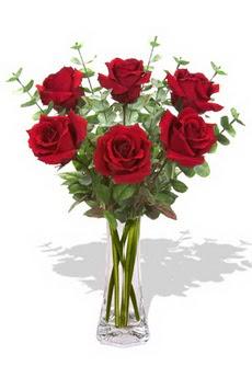 Tunceli çiçek gönderme sitemiz güvenlidir  6 kırmızı gül vazosu