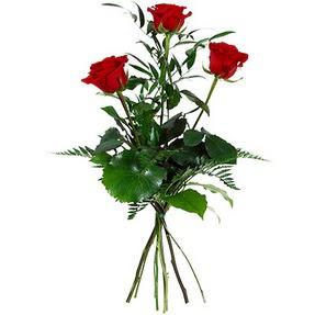 Tunceli çiçek siparişi sitesi  3 adet kırmızı gülden buket