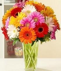 Tunceli online çiçek gönderme sipariş  15 adet gerbera çiçek vazosu