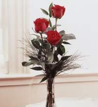 Tunceli çiçek gönderme  Vazoda 3 adet güzel gül