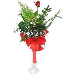 Tunceli çiçekçiler  Cam vazoda masum tek gül