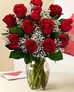 Sevgilime hediye 9 adet 1.ci kalite gül  Tunceli çiçekçiler