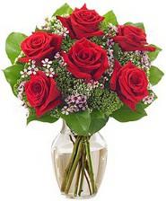 Kız arkadaşıma hediye 6 kırmızı gül  Tunceli çiçek satışı