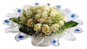 Tunceli çiçek siparişi vermek  11 adet Beyaz güller özel cam tanzim