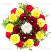 Tunceli çiçek gönderme sitemiz güvenlidir  13 adet mevsim çiçeğinden görsel buket