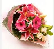 1 dal kazablanka ve mevsim çiçekleri  Tunceli çiçek satışı