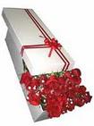 Tunceli güvenli kaliteli hızlı çiçek  11 adet 1.kalite magnum güller