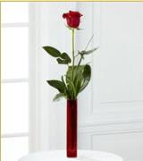 Vazo içerisinde 1 adet kırmızı gül  Tunceli çiçek satışı