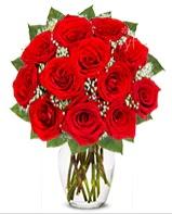12 adet vazoda kıpkırmızı gül  Tunceli hediye çiçek yolla