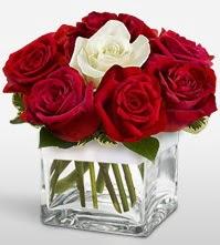 Tek aşkımsın çiçeği 8 kırmızı 1 beyaz gül  Tunceli çiçek siparişi sitesi