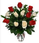 Vazo içerisinde 6 kırmızı 6 beyaz gül  Tunceli İnternetten çiçek siparişi