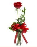 vazo içerisinde 1 adet kırmızı gül  Tunceli güvenli kaliteli hızlı çiçek