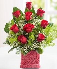 Cam içerisinde 9 adet kırmızı gül  Tunceli çiçek gönderme
